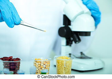 食物, 助理, 質量, 實驗室