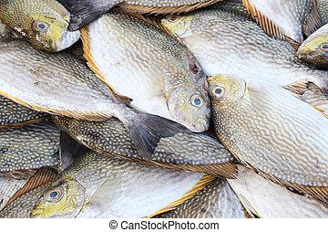 食物, 田園, 魚マーケット, 新たに
