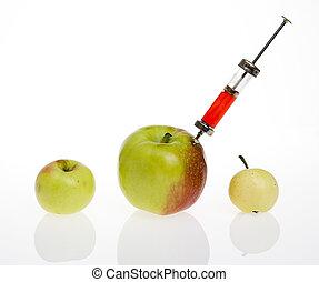 食物, 遺伝, 概念, 修正された