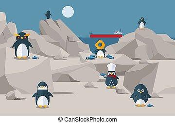 食物, three-cap, 特徴, 岩が多い, シェフ, 海岸, 得られた, ペンギン, 鳥, ペンギン, 帽子, ベクトル, 持ちなさい, s, 昼食, 外部。, illustration.