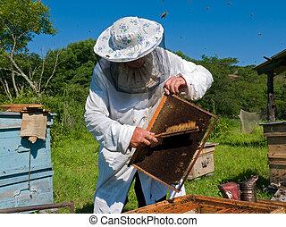 養蜂家, 30