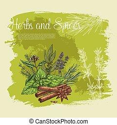 香料, 百里香, 海報, 矢量, 藥草, 迷迭香, basil