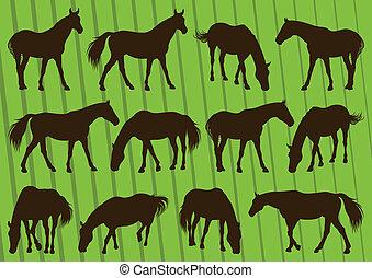 馬, イラスト, シルエット, コレクション, 背景, スポーツ