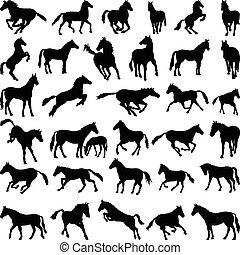 馬, シルエット, 姿勢, 様々