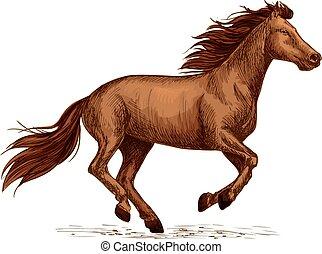 馬, シンボル, 種馬, 競争, スポーツ, 競争, 印。