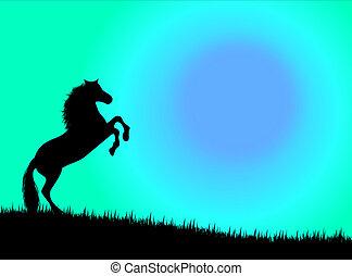馬, 中に, ∥, 日没