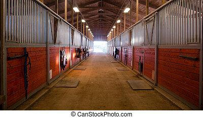 馬, 中心, 牧場, によって, 道, パドック, 安定した, 乗馬者