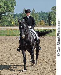 馬, 乗馬者, スポーツウーマン, 種馬, 黒, 乗馬, パドック