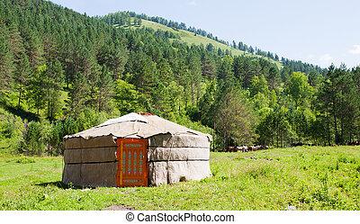 馬, 山の景色, yurta, 群れ