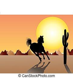 馬, 日没, 背景