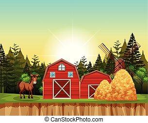 馬, 現場, 赤い納屋