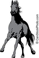 馬, 白, 灰色, 隔離された