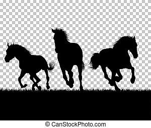 馬, 草, シルエット, 背景