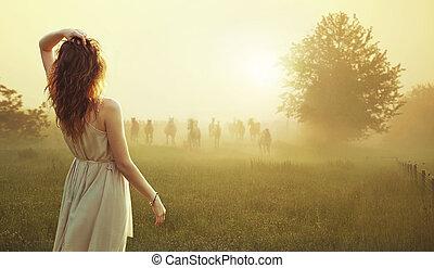 馬, 黑發淺黑膚色女子, 觀看, 年輕, 牧群, 夫人