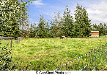 馬, spring., 小屋, 大きい, 牧草地, の間