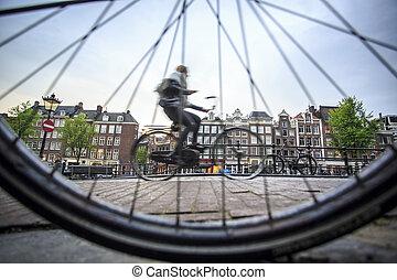 騎自行車, 在, 阿姆斯特丹, the, 荷蘭