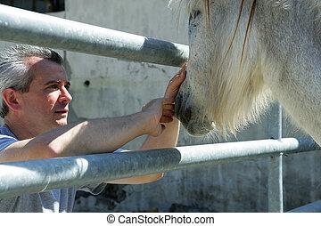 马, 人, 鼻子, 打击