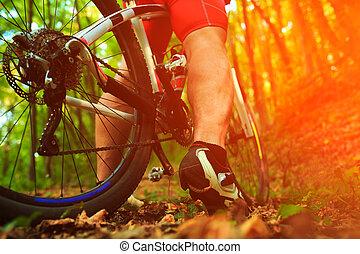 骑车者, 山, 角度, 自行车, 低, 摆脱, 察看
