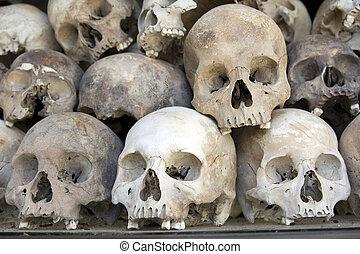 骨, 头骨, 领域, cambodia, 杀害