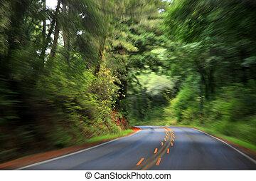 高く, スピード, 運転
