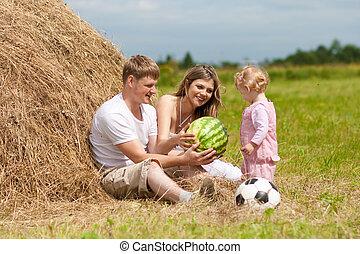 高兴的家庭, 有, 乐趣, 在中, 干草堆, 对于