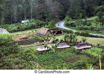 高地, 几尼, 几尼, 花园, 发生地点, 巴布亚, 村庄, 质朴, 新