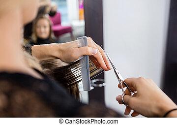 髪サロン, 切断, customer's, hairstylist