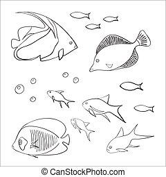 魚, かわいい, セット