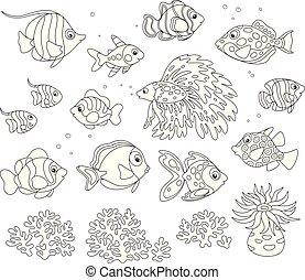 魚, セット