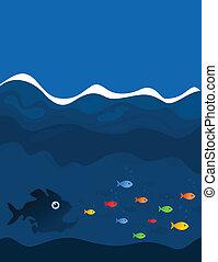 魚, 探求