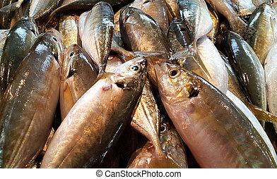 魚, 新たに, 市場