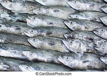 魚, 準備ができた, グループ, 卸し売り