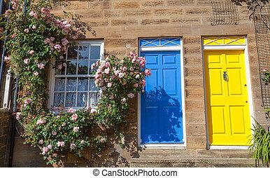 鮮艷, 村舍, 由于, 攀登, 玫瑰