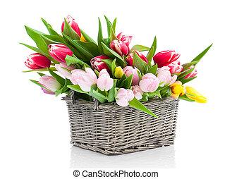 鮮艷, 郁金香, 花, 在, a, 籃子, 被隔离, 在懷特上