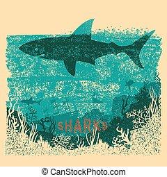 鯊魚, 紙, 老, 游泳, 海, 背景, text., 海報, 葡萄酒