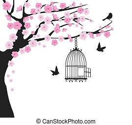 鳥かご, 木, 鳩