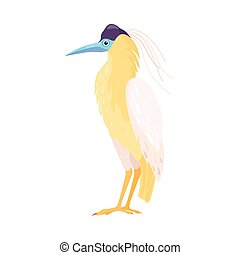 鳥, イラスト, aves, 羽, ∥あるいは∥, トロピカル, 明るい, 温血, ベクトル, 脊椎動物
