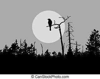 鳥, シルエット, 木