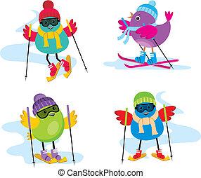 鳥, スキー