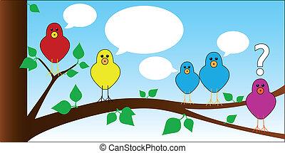 鳥, チャット