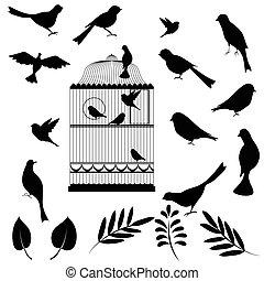 鳥, ベクトル, ケージ, イラスト