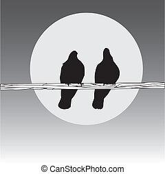 鳥, 上, the, 電線