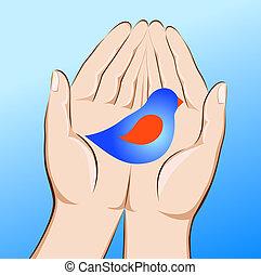 ∥, 鳥, 中に, 手