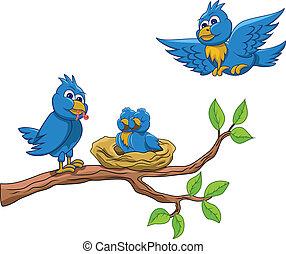 鳥, 家庭