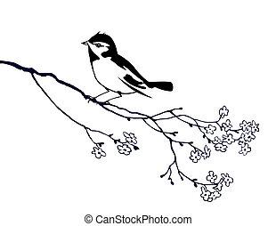 鳥, 木の枝, シルエット