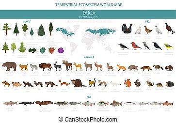 鳥, map., 生態系, 世界, 動物, infographic, 地球である, 植物, デザイン, biome, fish, forest., boreal, taiga, 雪