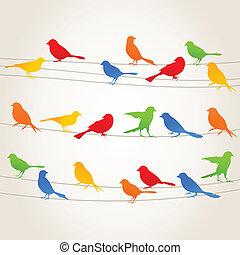 鳥, wire5