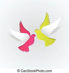 鳩, 恋人, ペーパー, 白い背景