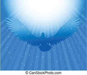 鳩, 精神, 神聖