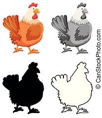 鶏, セット, 特徴